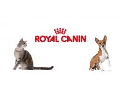 Наши партнеры  Royal Canin