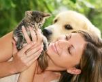 Как уберечь домашних животных от клещей?