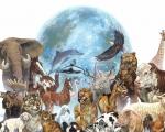 Поздравляем с всемирным днем прав животных!