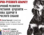 Семинар с Дмитрием Бережным
